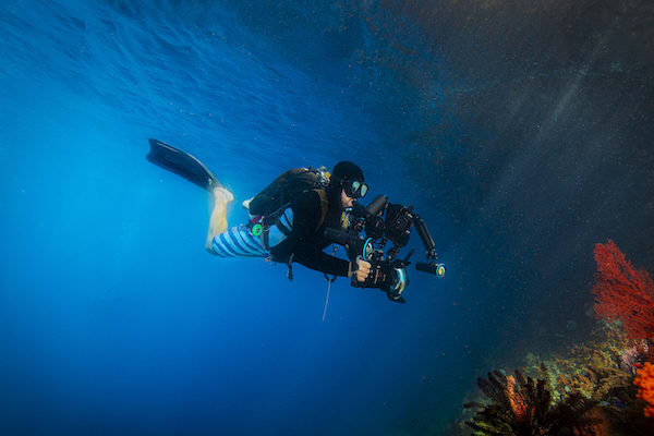 Tiare's 12-Day Maumere & The Forgotten Islands - Day Four - Filming Underwater
