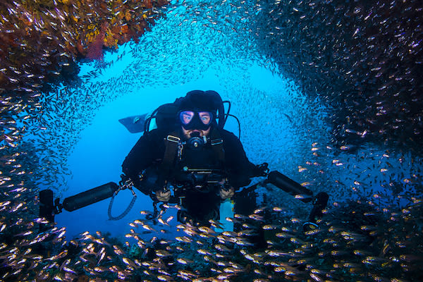 Tiare's 12-Day Maumere & The Forgotten Islands - Day Five - Diving