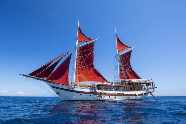 Tiare's 12-Day Maumere & The Forgotten Islands - Day 8 - Tiare Sailing