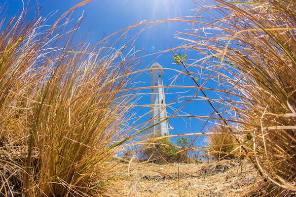 Fenides's 9-Day Komodo & West Komodo - Day Eight - Trekking to View Point