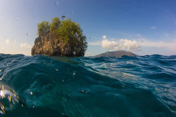 Fenides' 10-Day All Around Alor - Day Ten - Snorkeling