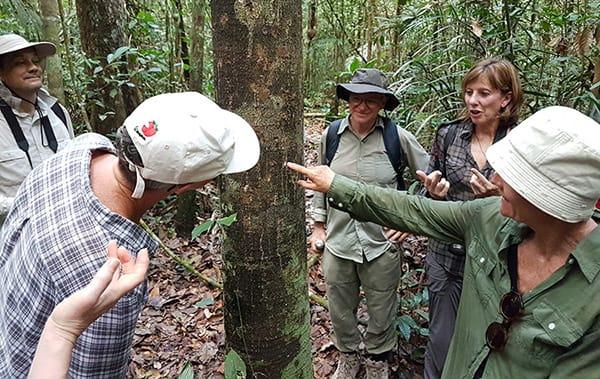 Amazon Odyssey's 3-Day Escape Cruise Day Three - Guided Jungle Walk.