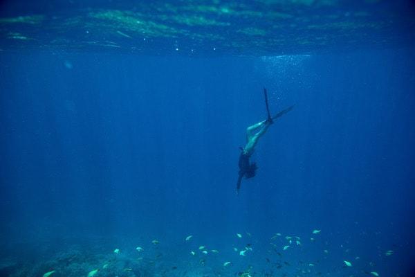 Dunia Baru's 7-Day Bali to Komodo - Day Two - Freedive