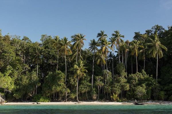 Dunia Baru's 13-Day Flores, Forgotten Islands & Maluku - Day Ten - Turquoise Beach