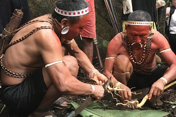 Amazon Dream's 6-Day Manaus Cruise Itinerary Day One - Inhabitants of the Rio Negro.