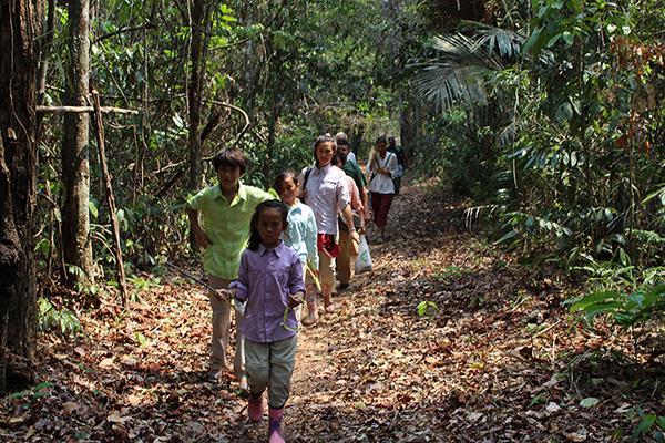 Amazon Dream's 7-Day New Years Cruise Itinerary Day Three - Guided Jungle Walk.