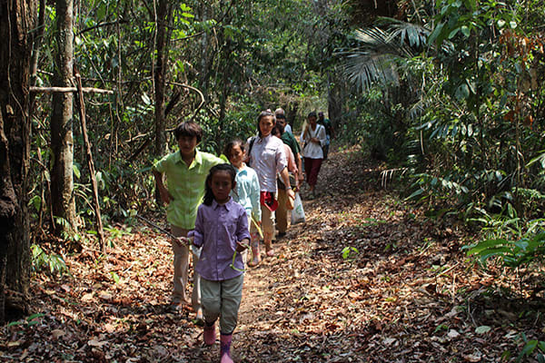 Amazon Dream's 10-Day Manaus Cruise Itinerary Day Seven - Exploring the rainforest on foot.