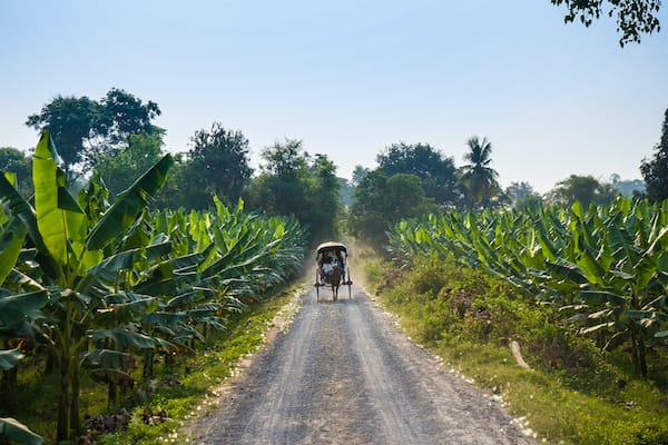 The Strand's 5-Day Bagan to Mandalay - Day Four - Excursion on Horse Cart in Ava