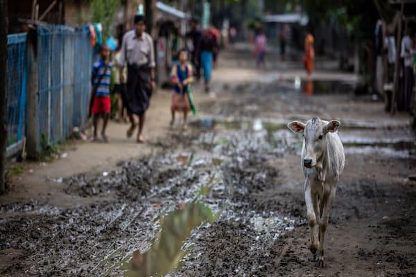 Kha Byoo Pandaw's Upper Irrawaddy: Mandalay to Bagan - Day Nine - Inside a Local Village