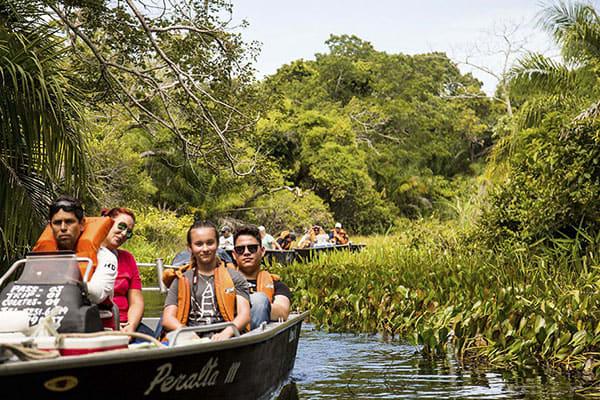 Peralta's 5-Day Porto Jofre Itinerary Day Three - Exploring the jungle.