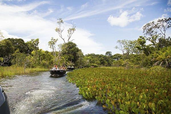 Peralta's 5-Day Victoria Regina Itinerary Day One - Jungle Exploration.