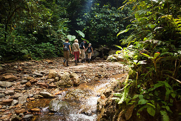 Mashpi Lodge's 3-Day Itinerary Day One - Waterfall Excursions.