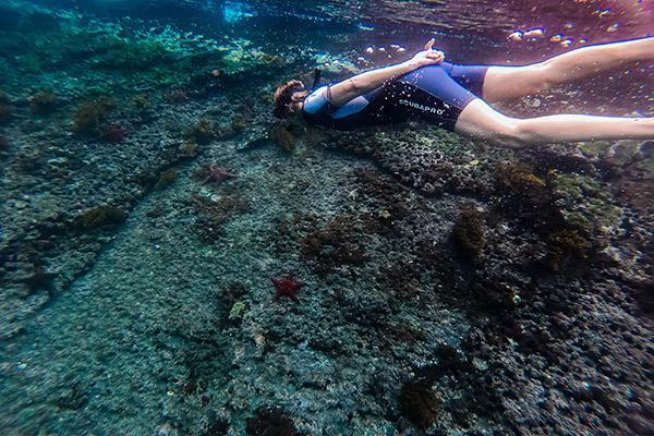 Galapagos Safari Camp's Classic Safari Day Two - Snorkelling.