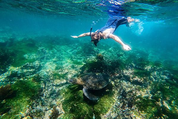Galapagos Safari Camp's Family Safari Day Three - Snorkelling Excursion.