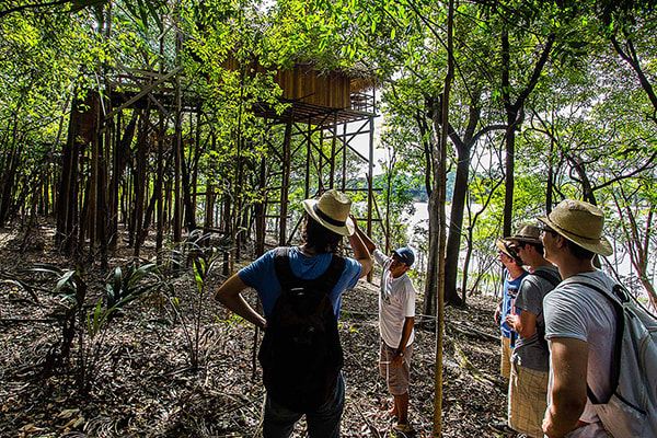 Juma Amazon Lodge's 5-Day Tucano Program Day Five - Tour around the lodge.