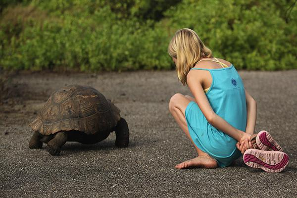 Passion's 4-Day Itinerary Day One - Galapagos Giant Tortoise Sighting.