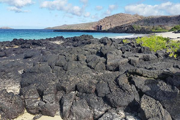 Passion's 8-Day Western and Central Itinerary Day Four - Floreana Island Black Beach.