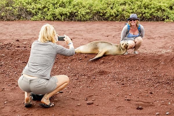 Passion's 8-Day Eastern and Central Itinerary Day Four - Sea Lions on Rabida Island.