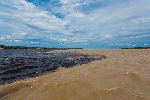 Juma Amazon Lodge's 3-Day Arara Program Day One - Meeting of the Waters.