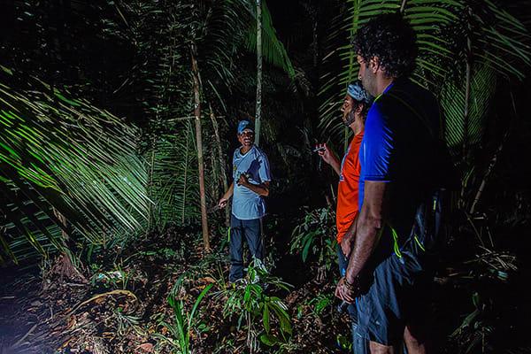 Juma Amazon Lodge's 3-Day Arara Program Day One - Night Hike.