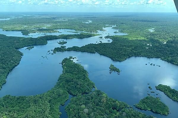Juma Amazon Lodge's 3-Day Arara Program Day Three - Juma River.