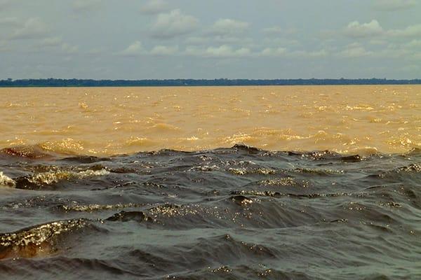 Juma Amazon Lodge's 4-Day Mutum Program Day One - Meeting of the Waters.