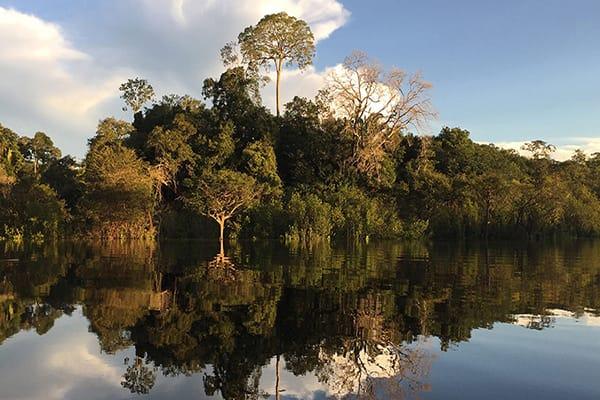 Juma Amazon Lodge's 4-Day Mutum Program Day Three - Juma River Landscape.
