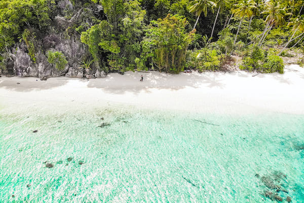 Rascal's 12-Day Spice Islands Crossing Ambon to Raja Ampat - Day 8 - Deserted Beach