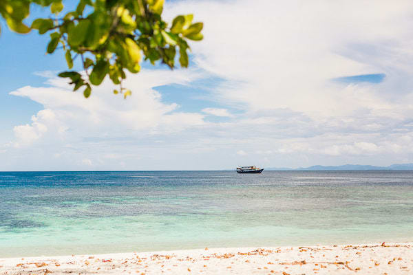 Rascal's 12-Day Spice Islands Crossing Ambon to Raja Ampat - Day 10 - Rascal in the distance