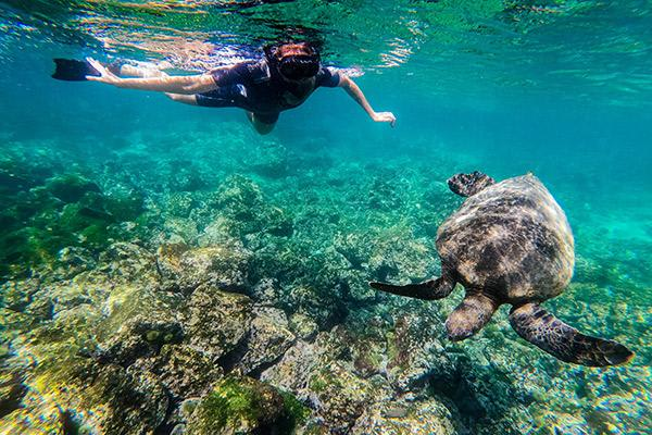 Nemo II's 5-Day Southern Islands Itinerary Day Four -  Snorkelling Excursion.