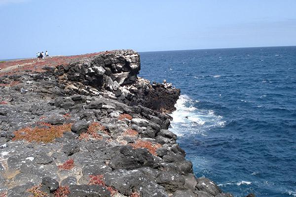 Seaman Journey's 5-Day Itinerary Day Three - Española Island.