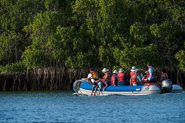 Seaman Journey's 15-Day F2 Itinerary Day Six - Panga Ride.