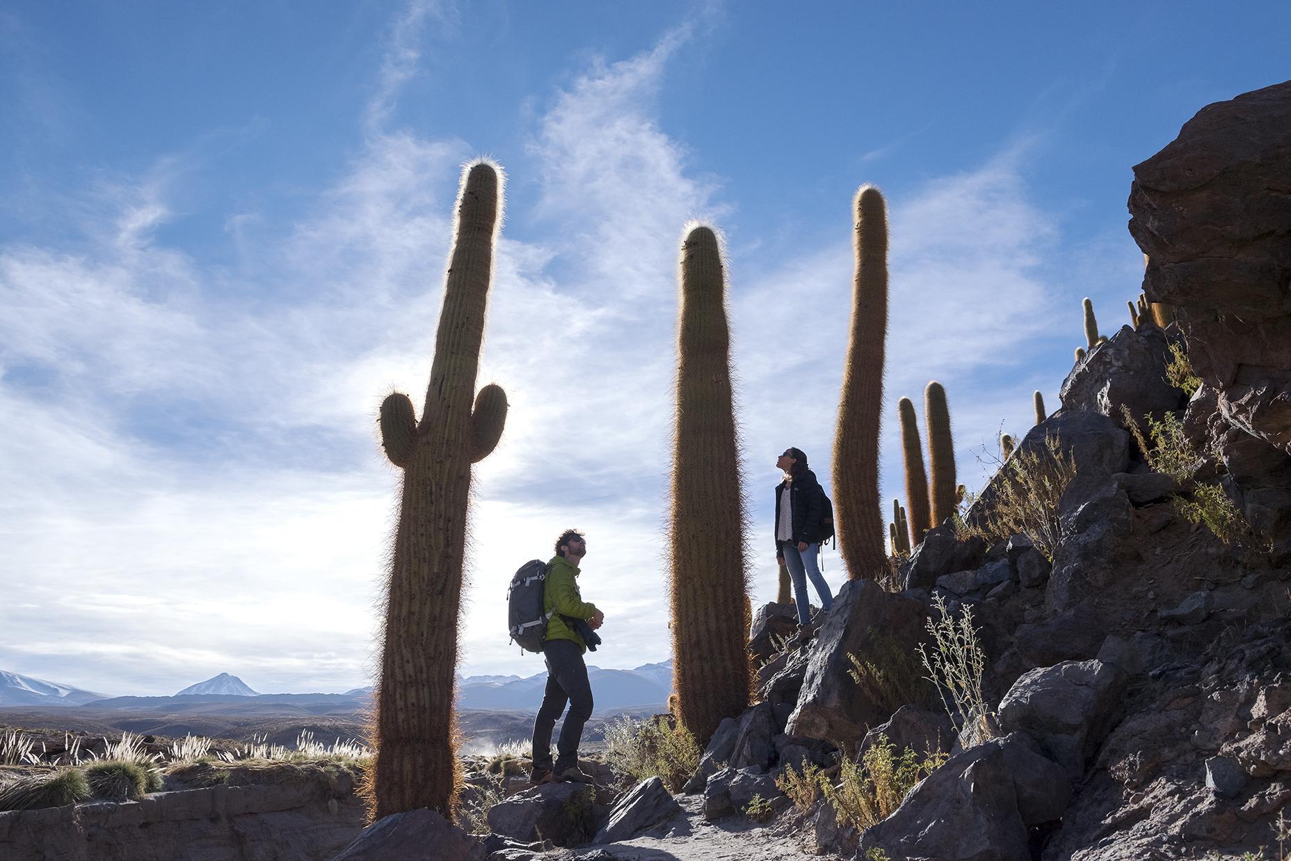 Tierra Atacama's 6-Day All Inclusive Program Day Four - Guatin-Gatchi Valley Hike.