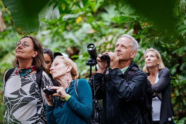 Manatee Amazon's 5-Day Itinerary Day Four - Spotting Wildlife.