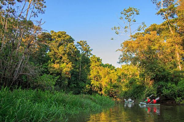 Manatee Amazon's 8-Day Itinerary Day Six - Kayaking on the Amazon River.