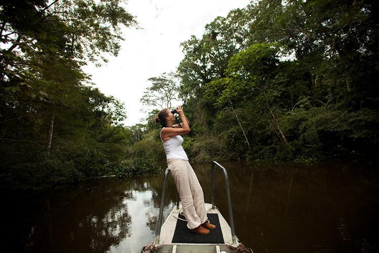 Delfin II Amazon's 4-Day Itinerary Day Two - Spotting Wildlife.