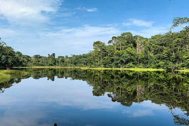 Delfin II Amazon's 5-Day Itinerary Day One - Amazon River Views.