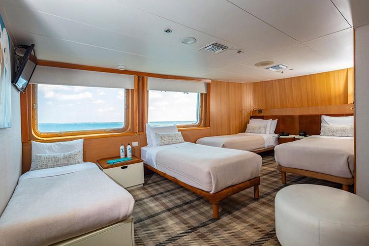 Galapagos Legend's Junior Suite - Quadruple.
