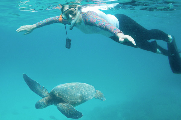 Grand Majestic's 8-Day Itinerary A Day Four - Snorkelling with Turtles.