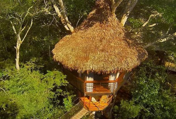 Treehouse Lodge's Dos Ramas Cabin - Exterior.