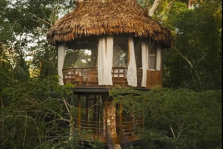 Treehouse Lodge's Laguna Vista Cabin - Exterior.
