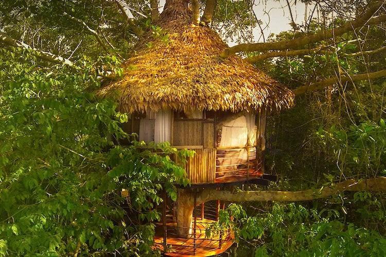 Treehouse Lodge's Rio Vista Cabin - Exterior.