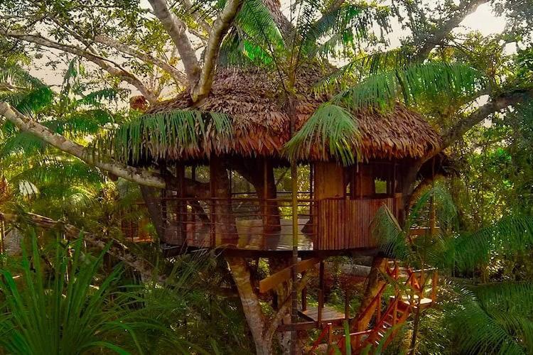Treehouse Lodge's Casa Grande Cabin - Exterior.