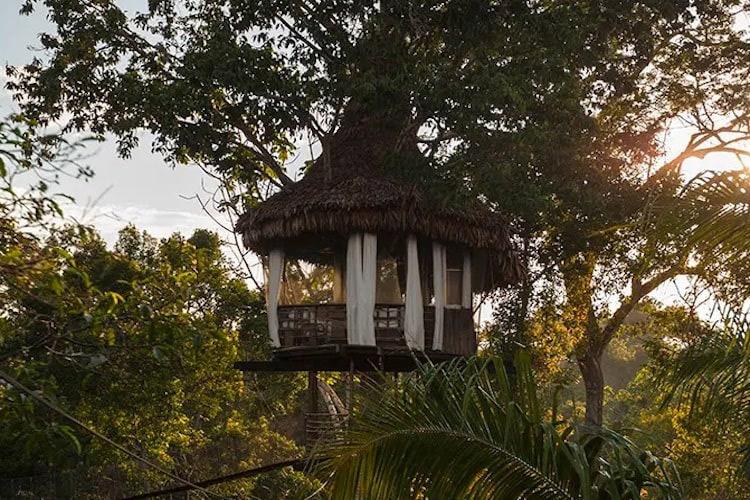 Treehouse Lodge's Casa Alta Cabin - Exterior.