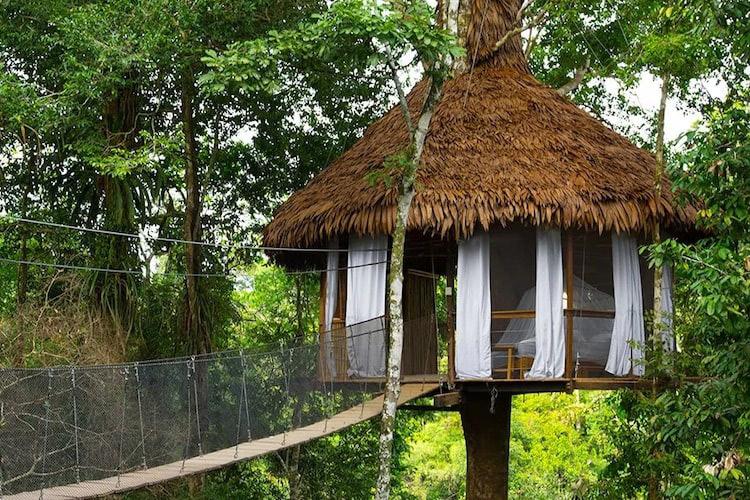 Treehouse Lodge's Costa Bella Cabin - Exterior.