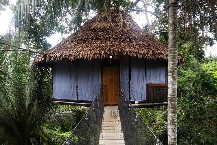 Treehouse Lodge's Soledad Cabin - Exterior.