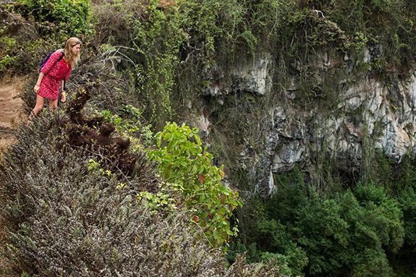 Galapagos Legend's 8-Day 'A+B' Itinerary Day Seven - Santa Cruz Island.