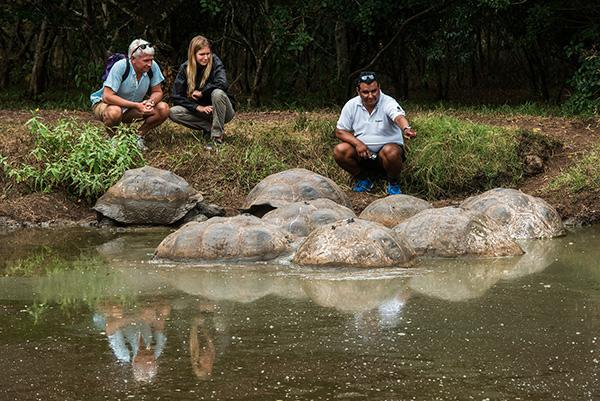 Galapagos Legend's 8-Day 'D+A' Itinerary Day Five - Galapagos Giant Tortoises.