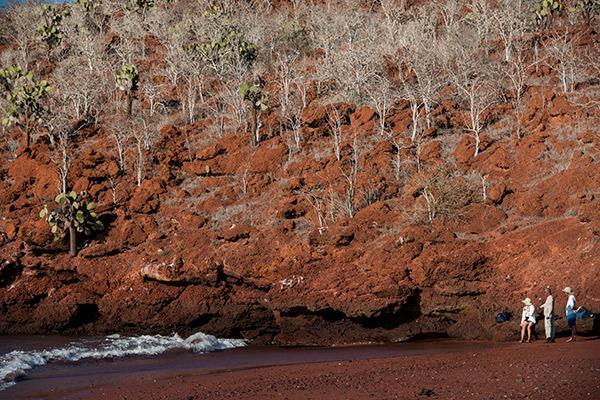 Galapagos Legend's 8-Day 'B+C' Itinerary Day Two - Rabida Island.