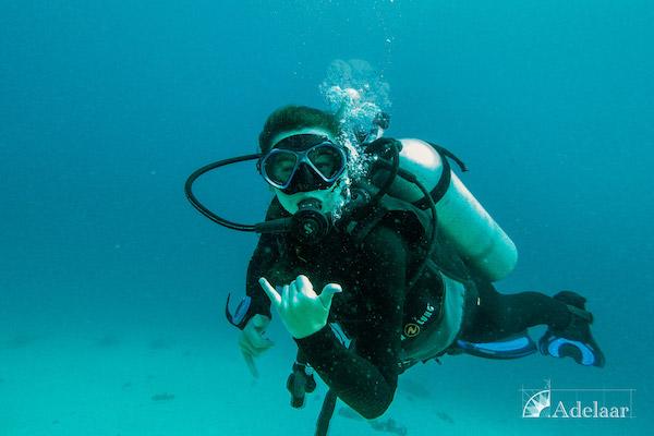Adelaar's 11-Day Signature Bali Komodo Bali - Day Two - Diving